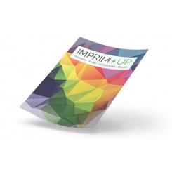 Flyer 10,5x21 standard mat ou brillant