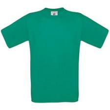 Pacific Green (vert)