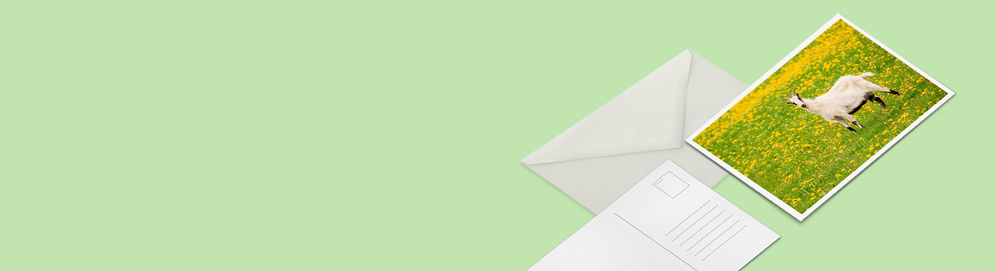 Imprimer carte postale écologique