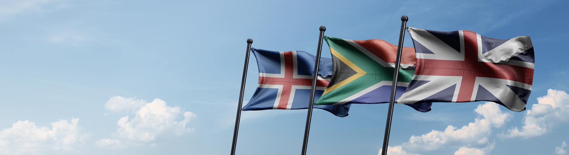 Imprimer drapeau pays pour événement