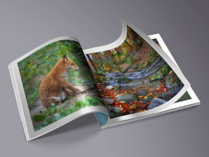 Impression Livre photo couverture souple